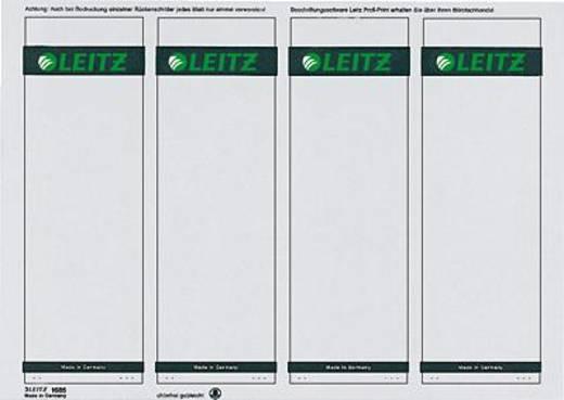 Leitz rugetiketten, op pc beschrijfbaar/1685-20-85 61x191mm grijs inh.100