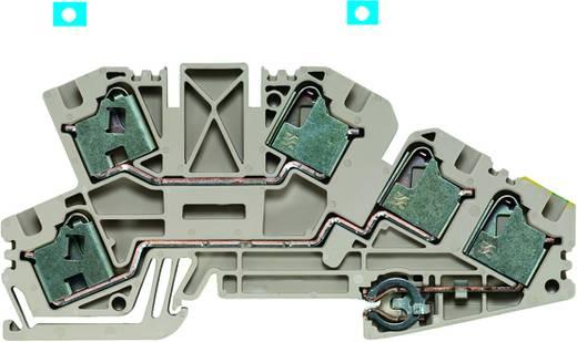 Installatie-etageklem PDL 4/N/L/PE Weidmüller