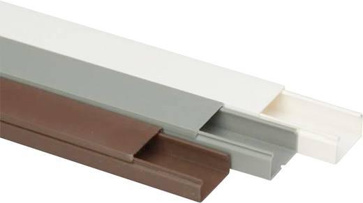Heidemann 09956 Kabelgoot (l x b x h) 2000 x 30 x 15 mm 1 stuks Grijs