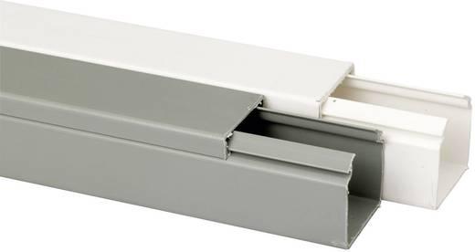 Heidemann 09972 Kabelgoot (l x b x h) 2000 x 40 x 40 mm 1 stuks Zuiver wit