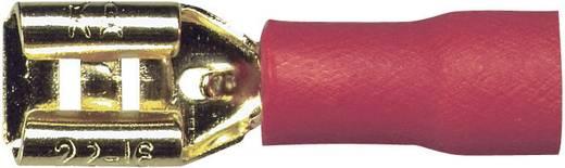 Sinuslive Car-HiFi platte stekker Set van 10 1.5 mm² 4.8 mm Verguld