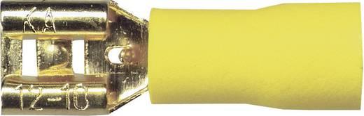 Sinuslive Car-HiFi platte stekker Set van 10 6 mm² 6.3 mm Verguld