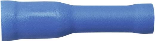 Sinuslive Car-HiFi bol kabelschoenhuls Set van 10 2.5 mm² 4 mm Verguld