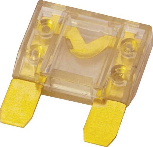 Sinuslive platte zekeringen Maxi 1 stuks