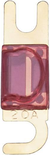 Sinuslive zekering Mini-ANL 20 A 1 stuks