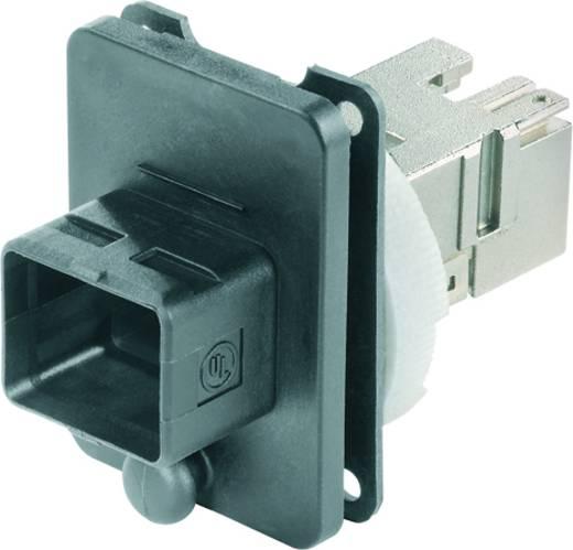 Weidmüller IE-BS-V04P-RJ45-C Glasvezelconnnector Koppeling