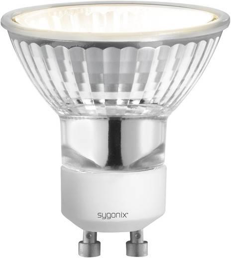Sygonix Halogeen 55 mm 230 V GU10 20 W Warmwit Energielabel: E Reflector Dimbaar 1 stuks