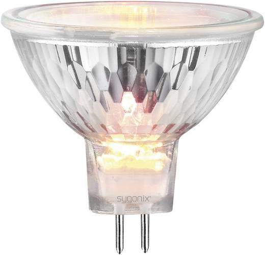 Sygonix Halogeen 51 mm 12 V GU5.3 40 W Warm-wit Energielabel: C Reflector Dimbaar 1 stuks