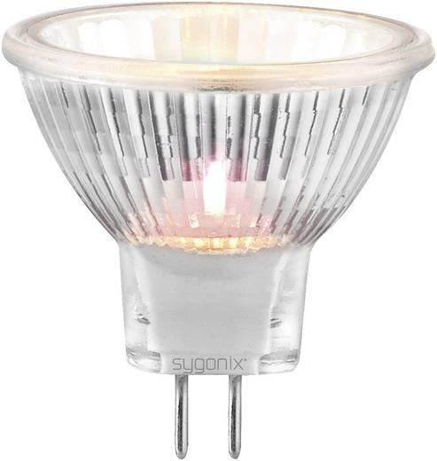 Sygonix Halogeen 35 mm 12 V G4 20 W Warm-wit Energielabel: C Reflector Dimbaar 3 stuks