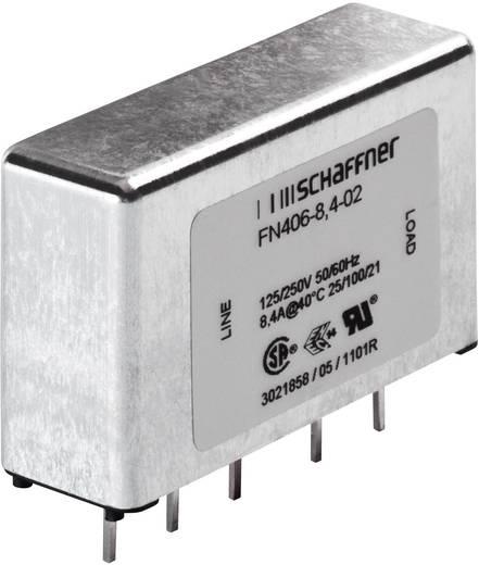 Schaffner FN 406-1-02 Ontstoringsfilter 250 V/AC 1 A 12 mH 1 stuks