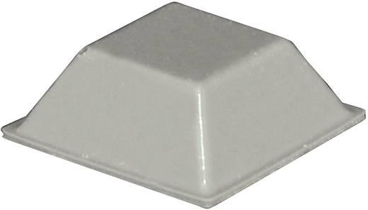 TOOLCRAFT PD2205G Apparaatvoet Zelfklevend, Vierkant Grijs (l x b x h) 20.5 x 20.5 x 7.5 mm 1 stuks