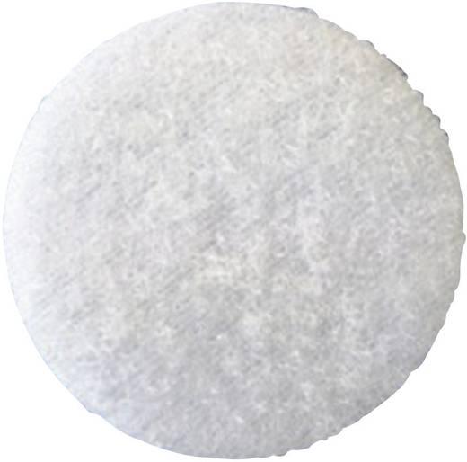 Fastech T02035000003C1 Klittenband punt om vast te plakken Lusdeel (Ø) 35 mm Wit 1 stuks