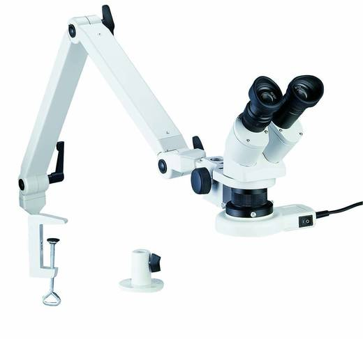 Bernstein 9-158 Stereomicroscoop Binoculair 20 x Opvallend licht