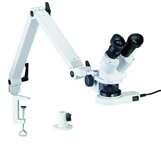Bernstein Stereomicroscoop Binoculair 20 x Opvallend licht