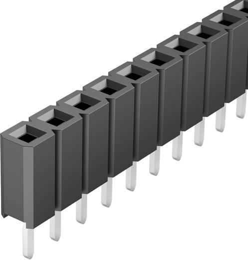 Female connector (standaard) Aantal rijen: 1 Aantal polen per rij: 36 Fischer Elektronik BL LP 1/ 36/Z 1 stuks