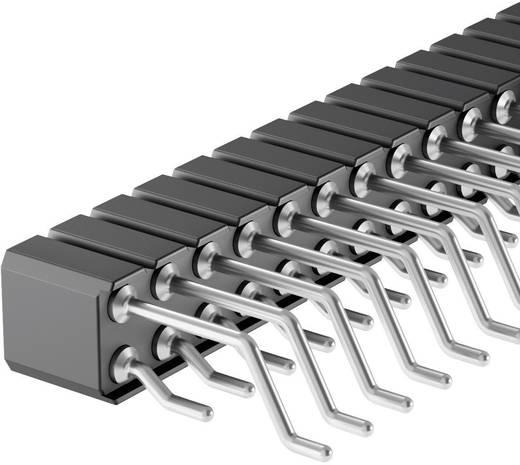 Female connector (precisie) Aantal rijen: 2 Aantal polen per rij: 20 Fischer Elektronik BLY 9 SMD/ 40 1 stuks