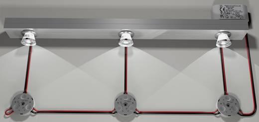 Adels-Contact LED 3050 Verdeeldoos Flexibel: 0.34-0.5 mm² Massief: 0.34-0.5 mm² Aantal polen: 2 1 stuks Lichtgrijs