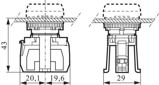 Contact element 1x NO schakelend 600 V BACO 331ER10 1 stuks