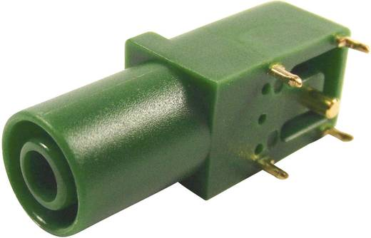 Cliff FCR7350G Veiligheids-labconnector, female Bus, haaks Stift-Ø: 4 mm Groen 1 stuks