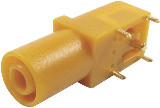 Veiligheids-labconnector, female Bus, haaks Cliff FCR7350Y Stift-Ø: 4 mm