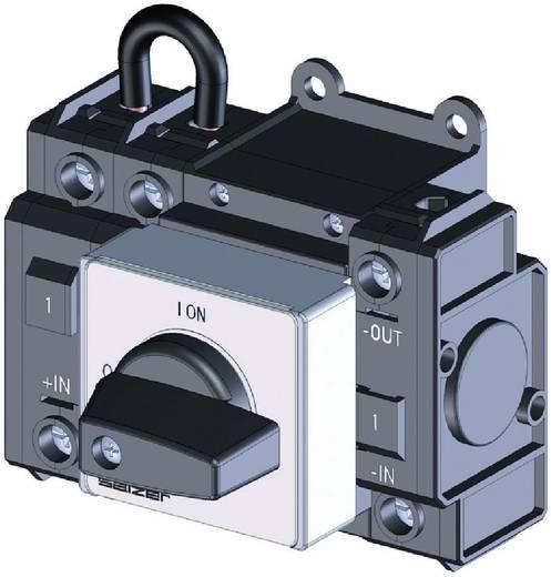 Lastscheidingsschakelaar Gelijkspanning 50 A 1000 V 1 x 90 ° Zwart Sälzer D242-83300-026M1 1 stuks