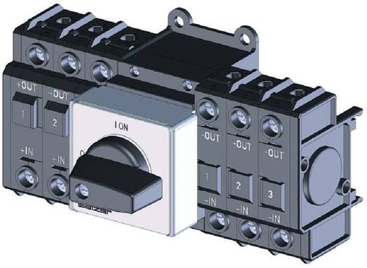 Lastscheidingsschakelaar Gelijkspanning 20 A 1000 V 1 x 90 ° Zwart Sälzer D242-85200-026M1 1 stuks