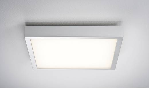 LED-plafondlamp Warm-wit Chroom (mat), Wit Paulmann 70385