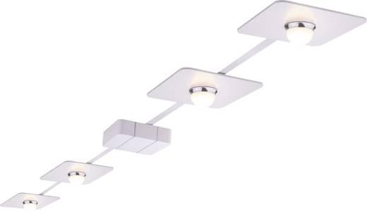 PadLED-systeem set 4x 10 watt wit/chroom 8 m