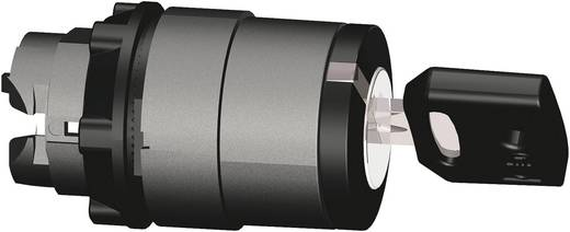 Schneider Electric Harmony ZB5AG2 Sleutelschakelaar Zwart 1 x 90 ° 1 stuks