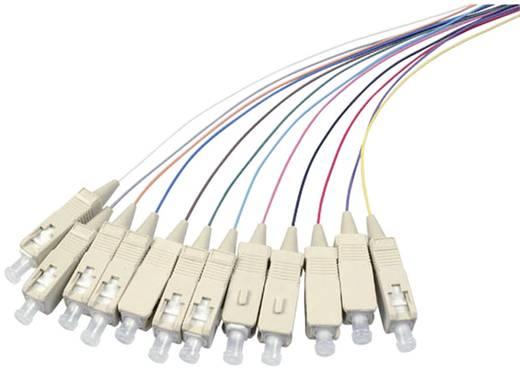 Kabel EFB Elektronik Glasvezel [1x SC-stekker - 1x Open einde] 50/125µ 2 m