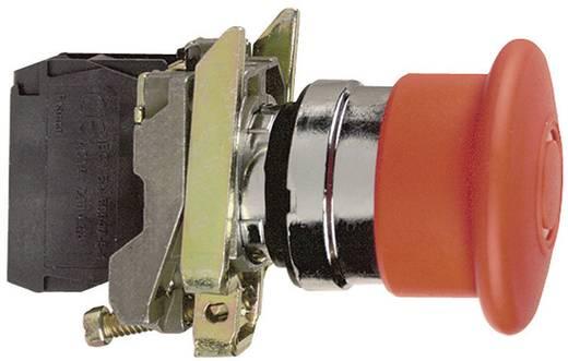Noodstop schakelaar 240 V/AC 3 A 1x NC, 1x NO Schneider Electric XB4BS8445 IP66 1 stuks
