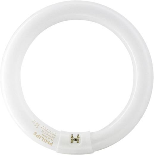 Philips Actinic ringvormige UV-buis 22 W G10q TPX22