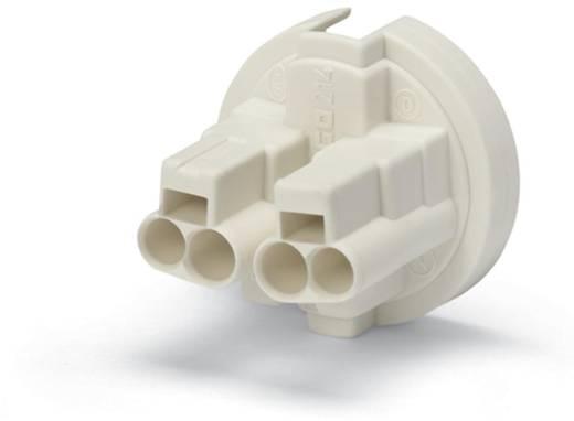 WAGO 214-178 Verbindingsklem Flexibel: - Massief: 0.5-1.5 mm² Aantal polen: 4 7000 stuks Geel
