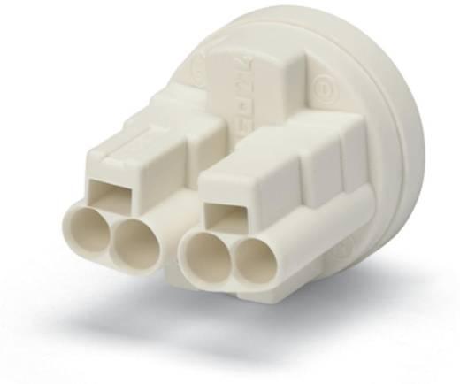 WAGO 214-186 Verbindingsklem Flexibel: - Massief: 0.5-1.5 mm² Aantal polen: 4 7000 stuks Geel