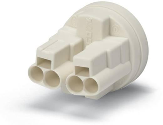 WAGO 214-187 Verbindingsklem Flexibel: - Massief: 0.5-1.5 mm² Aantal polen: 4 7000 stuks Geel