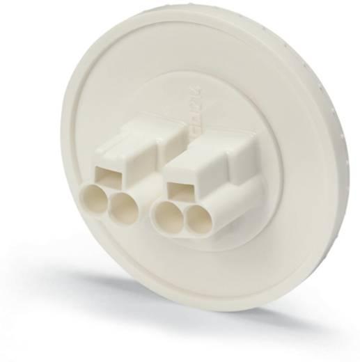 WAGO 214-253 Verbindingsklem Flexibel: - Massief: 0.5-1.5 mm² Aantal polen: 2 3000 stuks Geel