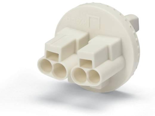 WAGO 214-290 Verbindingsklem Flexibel: - Massief: 0.5-1.5 mm² Aantal polen: 2 6000 stuks Geel