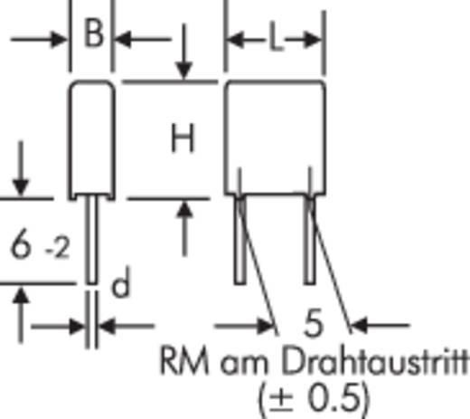 Wima MKS 2 0.1µF 400V 5 MKS-foliecondensator Radiaal bedraad 0.1 µF 400 V/DC 20 % 5 mm (l x b x h) 7.2 x 7.2 x 13 mm 1