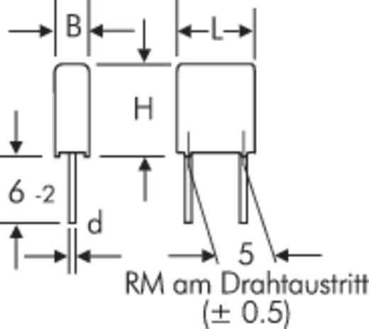 Wima MKS 2 0.22µF 100V 5 MKS-foliecondensator Radiaal bedraad 0.22 µF 100 V/DC 20 % 5 mm (l x b x h) 7.2 x 3.5 x 8.5 mm 1 stuks