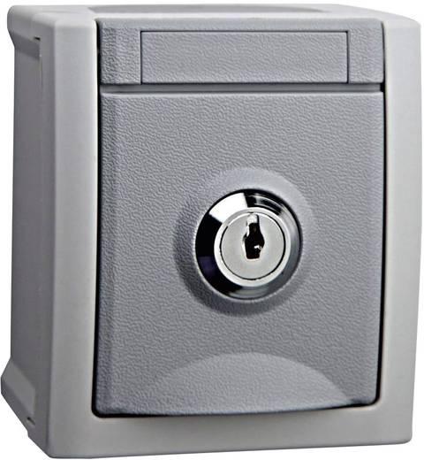 Stopcontact met randaarde afsluitbaar VIKO Pacific Grijs 90591042-DE