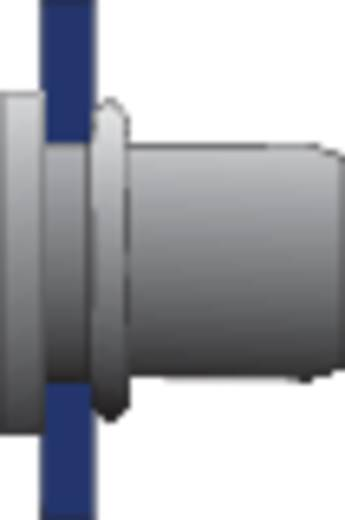 Bralo Klinknagelmoer roestvrij staal platbolkop ronde schacht open 9.5 mm Roestvrij staal AISI 304 10 stuks