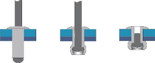 Bralo Blindklinknagel staal/staal platbolkop 14 mm Staal/staal 50 stuks