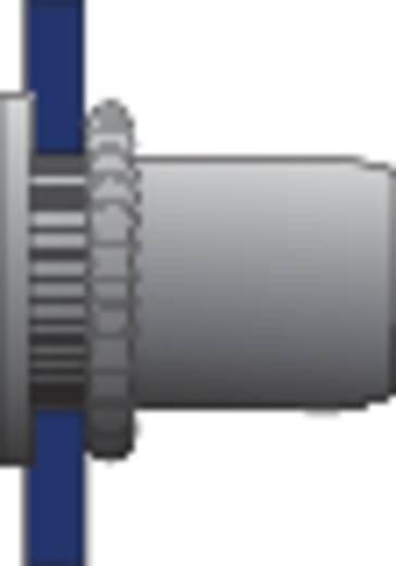Bralo Blindklinkmoeren platbolkop open staal rond met geribbelde nagel 8.5 mm Staal 500 stuks