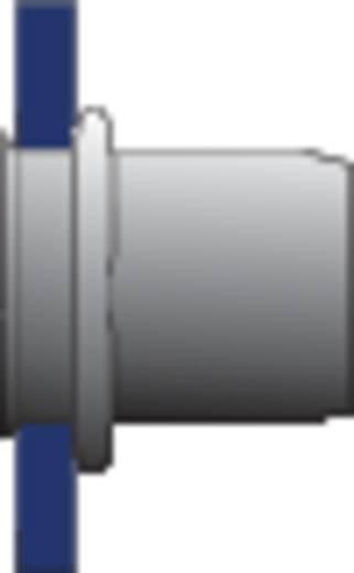 Bralo Klinknagelmoer staal platbolkop ronde schacht open 14.5 mm Staal verzinkt 10 stuks