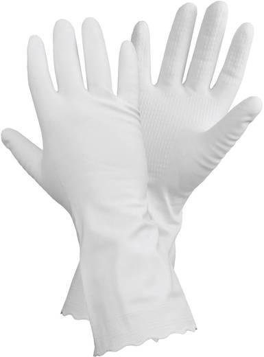 CleanGo 1462 DERMA-PROTECT vinyl huishoudhandschoen Vinyl Maat (handschoen): 10, XL