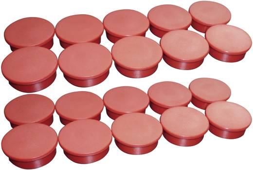 Moedel magneten Red I6086ROT (Ø) 25 mm 10