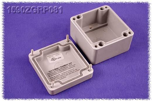 Hammond Electronics 1590ZGRP081PL Inlegplaat Plaatstaal Naturel 1 stuks