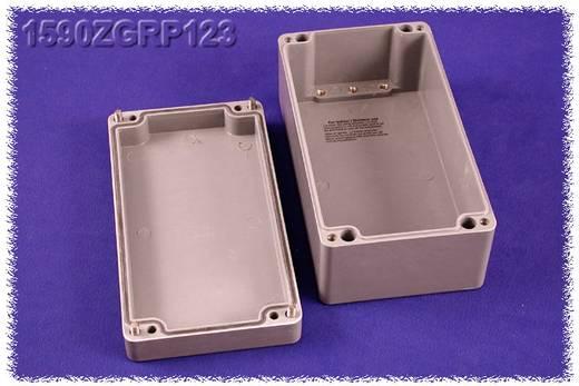Hammond Electronics 1590ZGRP123PL Inlegplaat Plaatstaal Naturel 1 stuks