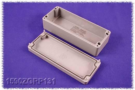 Hammond Electronics 1590ZGRP131PL Inlegplaat Plaatstaal Naturel 1 stuks