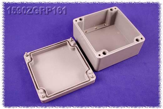Hammond Electronics 1590ZGRP161PL Inlegplaat Plaatstaal Naturel 1 stuks
